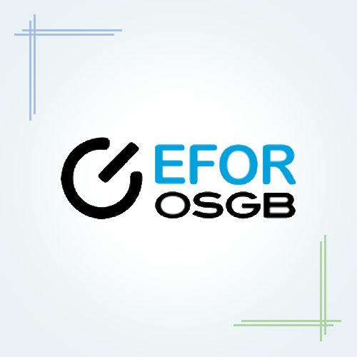 Efor OSGB